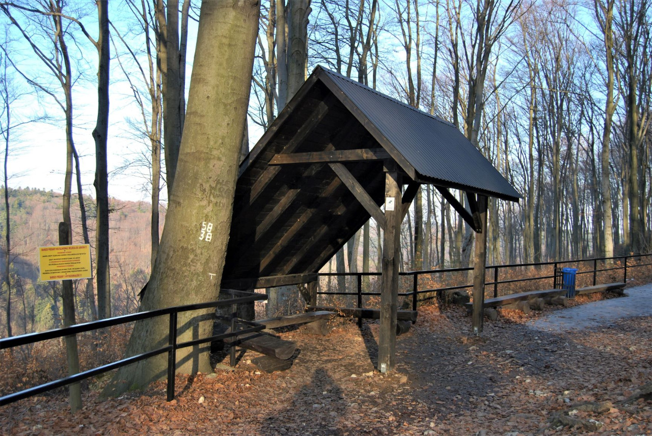 Nowy cennik opłat w Ojcowskim Parku Narodowym