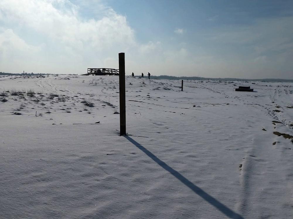 Pustynia Błędowska w zimowej scenerii